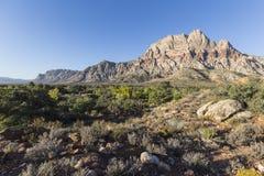红色岩石全国保护地区拉斯维加斯内华达 库存照片