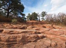 红色岩石在神的庭院里在科罗拉多斯普林斯 免版税库存照片