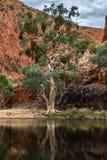 红色岩石山在AustraliaHoliday北方领土在澳大利亚-坎贝尔港国家公园是一个国家公园 免版税库存图片