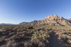 红色岩石峡谷全国保护地区早晨 库存图片