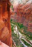 红色岩石峭壁在宰恩国家公园,犹他 免版税图库摄影