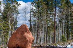 红色岩石营地矛国家森林科罗拉多斯普林斯woodl 免版税库存图片