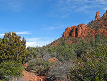红色岩石,鲜绿色画笔 免版税库存照片
