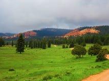 红色峡谷风景在犹他南部 库存图片