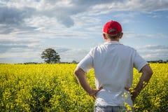红色帽子的农夫审查他的黄色油菜领域的 免版税库存图片