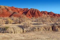 红色庄严山在全国自然保护Altyn Emel的疆土 卡扎克斯坦 免版税库存照片