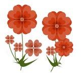红色开花由心脏做的数字式艺术 图库摄影