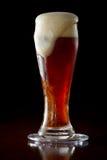 红色强麦酒啤酒 库存照片