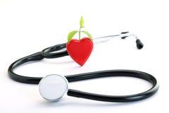 红色心脏、植物和听诊器 库存图片