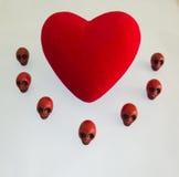 红色心脏受头骨的保护 库存图片