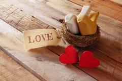 红色心脏和两只爱恋的鸟夫妇在巢 免版税图库摄影