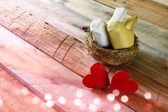 红色心脏和两只爱恋的鸟夫妇在巢 免版税库存照片