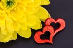 红色心脏和菊花 免版税库存照片