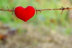 红色心脏和铁丝网 免版税库存照片