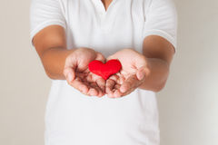 红色心脏在亚洲人手、健康医学和慈善concep上 库存图片