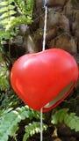 红色心脏垂悬的机动性 免版税库存图片