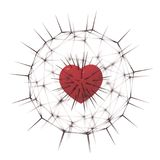 红色心脏毛茸的刺 库存照片