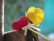 红色心脏由一块毛巾、棍子有铅笔的,领带丝带和心形的黄色叶子制成在一块玻璃与红色种子 免版税图库摄影