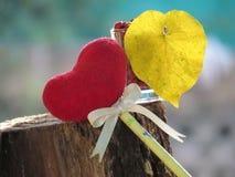 红色心脏由一块毛巾、棍子有铅笔的,领带丝带和心形的黄色叶子制成在一块玻璃与红色种子 库存照片
