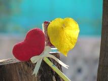 红色心脏由一块毛巾、棍子有铅笔的,领带丝带和心形的黄色叶子制成在一块玻璃与红色种子 免版税库存图片