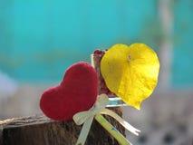红色心脏由一块毛巾、棍子有铅笔的,领带丝带和心形的黄色叶子制成在一块玻璃与红色种子 库存图片