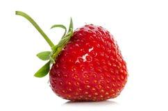 红色成熟草莓 图库摄影