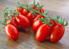 红色成熟蕃茄 免版税库存照片