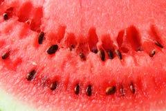 红色成熟西瓜 库存图片