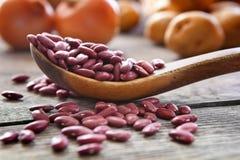 红色扁豆 免版税图库摄影
