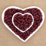 红色扁豆 库存图片