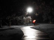 红色打扮了有红色伞的步行者在街灯点燃的一条蠕动的黑暗的自行车道路 库存图片