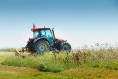 红色拖拉机装备一台大刈草机,裁减在mea的草 库存照片