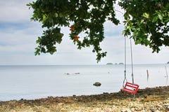 红色摇摆在海滩的树下 免版税库存图片