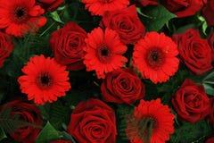 红色新娘安排 库存图片