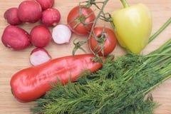 红色新鲜的萝卜、蕃茄、绿色和红辣椒和绿色莳萝在木厨房板 库存照片
