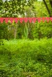 红色旗布旗子 免版税图库摄影