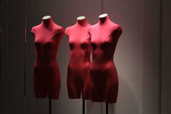 红色时装模特在窗口里 库存照片