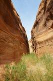 红色晃动在deser风景,自然的峡谷 库存图片