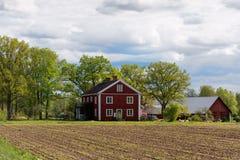 红色木房子在瑞典 免版税库存图片