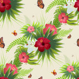 红色木槿开花,绿色叶子和蝴蝶 与自然植被的无缝的背景 库存图片