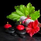 红色木槿的美好的温泉概念开花与露水,蜡烛, 库存照片