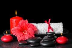 红色木槿的美好的温泉概念开花与露水,蜡烛a 库存图片