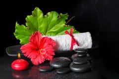 红色木槿美丽的温泉静物画开花与露水,蜡烛 免版税库存照片
