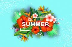 红色木槿花 热带的夏天 棕榈叶,植物,赤素馨花-在纸的羽毛削减了艺术 鸟加那利群岛天堂tenerife 皇族释放例证