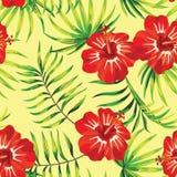 红色木槿黄色背景,样式 向量例证