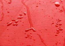 红色木纹理 库存照片