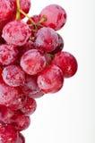 红色束的葡萄 图库摄影