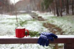 红色杯子和手套在雪桥梁在一个冬天停放 库存照片