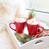红色杯子热巧克力用在窗台的蛋白软糖 周末概念 家庭样式 背景圣诞节关闭红色时间 免版税库存图片