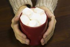 红色杯子顶视图热巧克力和蛋白软糖在女性 免版税库存图片